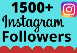 I will add 1500+ real and organic  Instagram followers for your business
