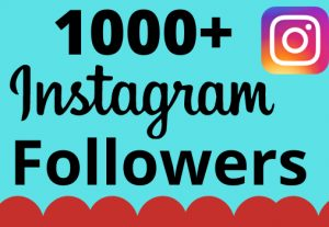 I will add 1000+ real and organic  Instagram followers for your business