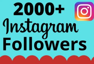 I will add 2000+ real and organic Instagram followers for your business