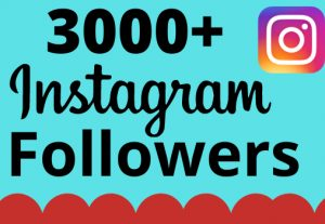 I will add 3000+ real and organic Instagram followers for your business