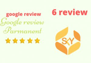 I will Provide you 6 Google review Permanent