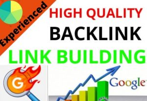 I will do high quality seo backlinks link building manually