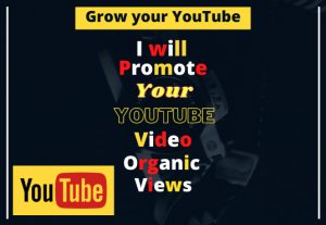 I will promote your 1200+ YouTube video organic views.