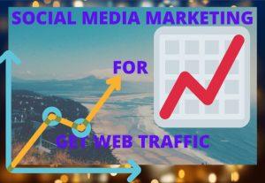 I can promote in social media for web traffic