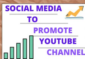 I can share the best social media to promote your youtube