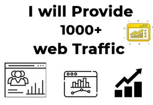 I will provide you 1000 targeted real organic web traffic visitors