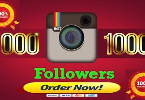 I Give you 100% Non-Drop 1230+ Instagram Followers