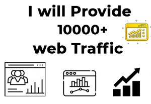 I will provide you 10000 targeted real organic web traffic visitors