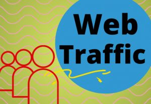 I will send 25,000 Website Traffic USA Targeted