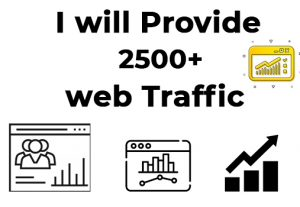 I will provide you 2500 targeted real organic web traffic visitors