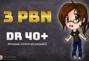 We build 3 PBN Permanent Dofollow homepage Backlinks DR 40+