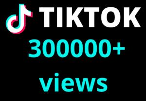 I will add  TIKTOK 300000+ views