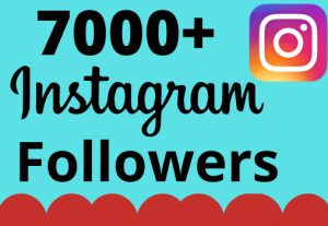 I will add 7000+ real and organic Instagram followers for your business