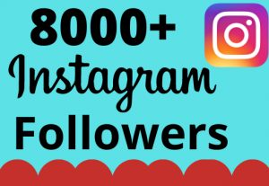 I will add 8000+ real and organic Instagram followers for your business