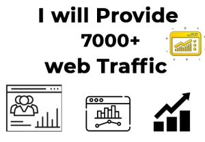 I will provide you 7000 targeted real organic web traffic visitors