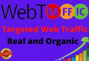 I Will Bring 15000 Real And Organic Targeted Web Traffic