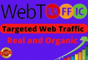 I Will Bring 5000 Real And Organic Targeted Web Traffic