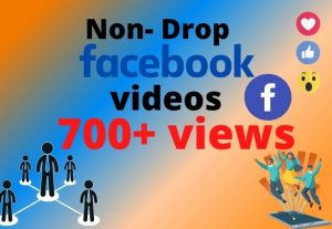I will provide 700+ Facebook real videos views