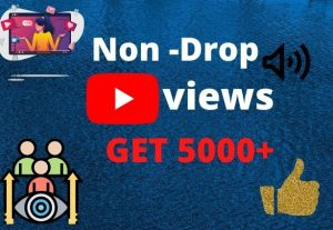 I will rich your youtube video get 5000+ views