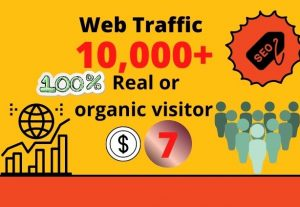 I will provide 10,000+ real or organic and targeted web traffic