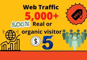 I will provide 5,000 real or organic and targeted web traffic