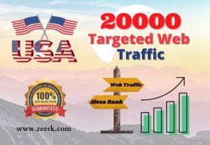 I will provide you 20,000 USA based real web traffic to your website.