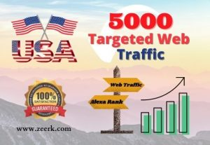 I will provide you 5000 USA based real web traffic to your website.