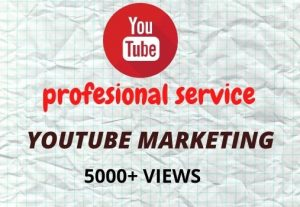 I will provide you 5000+ youtube views organically