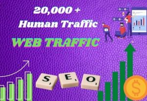 I WILL BRING 20,000+ REAL VISITORS AND ORGANIC TARGETED WEB TRAFFIC
