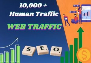 I WILL BRING 10,000+ REAL VISITORS AND ORGANIC TARGETED WEB TRAFFIC