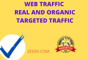 I will give you 12k  targeted and organic real visitors and web traffic