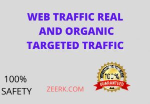 I will give you 5k  targeted and organic real visitors and web traffic