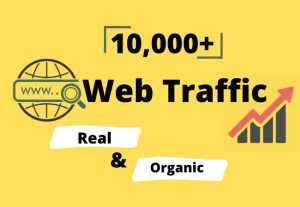 I will provide you 10,000+ real & organic targeted web traffic