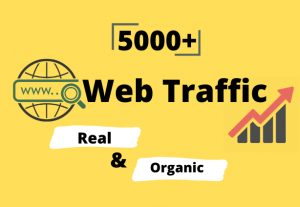 I will provide you 5000+ real & organic targeted web traffic