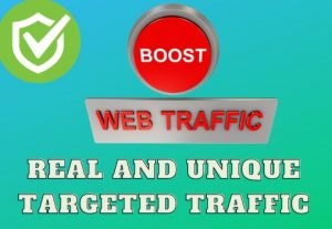 I Will Provide 5k+ Country Targeted Web Traffic To Your Website