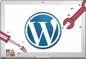 I will wordpress website maintenance, theme and plugin support