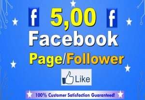 I will provide 500 likes to your Facebook page