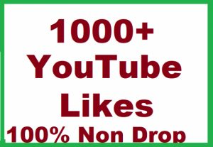 I Will Add High Quality Non Drop 1000+YOUTUBE Video Likes
