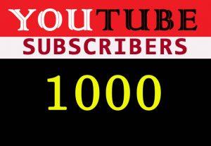 1000 YouTube Non-drop organic subscribers