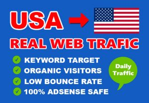 I will send 3000 country targeted web traffic