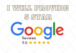 I Will Give 30 Five Star Permanent Google Review