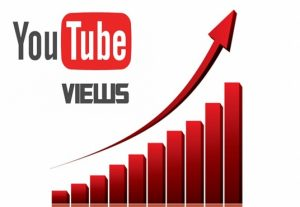 I will provide you 2500+ youtube views organically