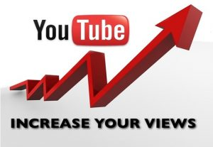 I will provide you 10000+ youtube views organically