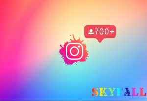 ADD 700+ INSTAGRAM FOLLOWERS NON DROP AND ORGANIC PROMOTION