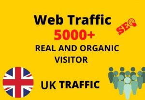 I will provide 5,000+ real or organic and targeted web traffic