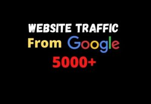 I will provide you 5000+ website traffic from google
