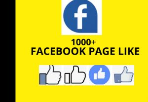 I WILL add 1000+ Facebook Page instant  likes active & non drop
