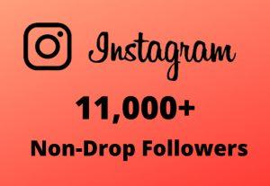 I will Provide 11,000+ Non-Drop & Guaranteed Instagram Followers