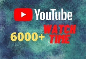 provide you 6000+ YouTube watch time
