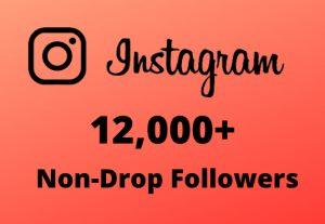 I will Provide 12,000+ Non-Drop & Guaranteed Instagram Followers